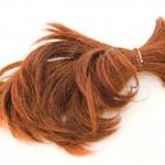 Hair sample