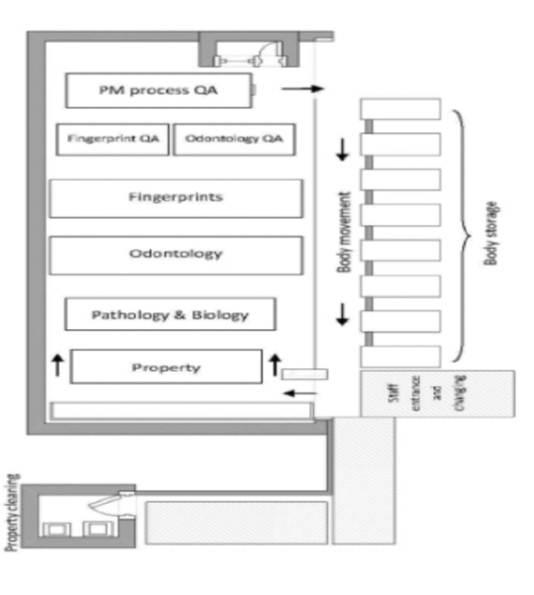 mass disaster victim identification essay Mass casualty identification through dna mass casualty identification through dna analysis: overview identification of victim remains from a mass casualty.